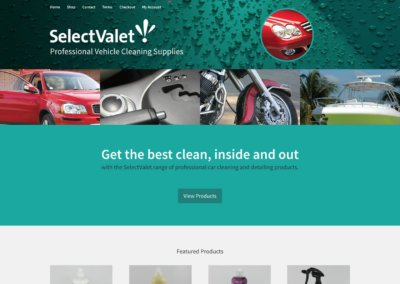 Select Valet Chemicals website